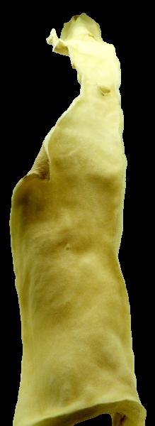 DELICANO Rinderkopfhautstange